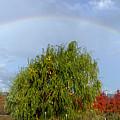 Fall Rainbow by Jim R Stephenson