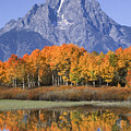 Fall Reflection At Oxbow Bend by Sandra Bronstein