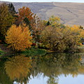 Fall Reflection Below The Hills In Prosser by Carol Groenen