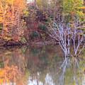 Fall Reflections by Angela Murdock