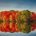 Fall Reflections At Mill Pnd by Jack Peterson