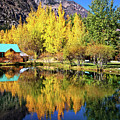 Fall Reflections At The Double Eagle by Lynn Bauer