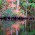 Fall Reflections by Bob Decker
