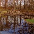 Fall Reflections by Deb Rassel