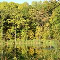 Fall Reflections by Melissa Hartner
