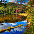Fall Reflections On Cary Lake by David Patterson