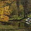 Fall Rowboat by Michael L Kimble