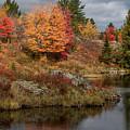 Fall Scene 3 by Marj Dubeau