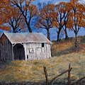 Fall Shed by Julia Ellis