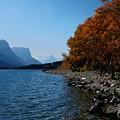 Fall Shoreline. by Tracey Vivar