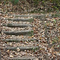 Fall Stairs by Stephen Orenstein