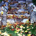 Fall Stairway by Will Borden