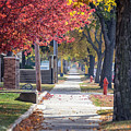 Fall Stroll On Broadway In Winona by Kari Yearous