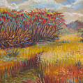 Fall Sumac Fields by Art Nomad Sandra  Hansen