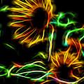 Fall Sunseeker by Aliceann Carlton