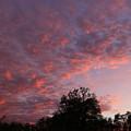 Fall Sunset by Mark Salamon