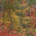 Fall Tapestry by David Boudreau