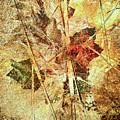 Fall Treasures by Georgianne Giese