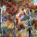 Fall Trees by Jimmie Trotter