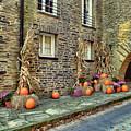 Fall Walkway  by Megan Miller