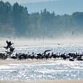 Fall Wasaga Beach by Richard Kitchen