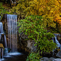 Fall Water Fall by Harry Spitz