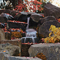 Fall Waterfall by Karen Goodwin