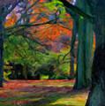 Fall Woods by Asar Studios