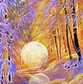 Falled Moon by Ombretta Lanari