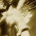 Fallen Angel Vertical Gold by Tony Rubino