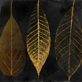 Fallen Gold II Autumn Leaves by Mindy Sommers
