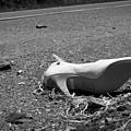 Fallen by Kevin Brett