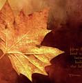 Fallen Leaf by Casey Heisler