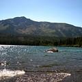 Fallen Leaf Lake - South Lake Tahoe by Albert  Almondia