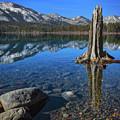 Fallen Leaf Lake Color by Mitch Shindelbower