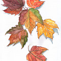 Falling Leaves by JoAnne Castelli-Castor