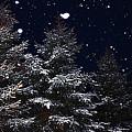 Falling Snow by David Kehrli