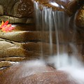 Falling Water by Winston Rockwell