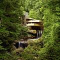 Fallingwater  by Mountain Dreams
