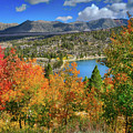 Fall's Finery At Rock Creek Lake by Lynn Bauer