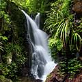 Falls Of Elabana  by Az Jackson
