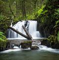 Falls On Canyon Creek by Robert Potts