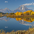 Falltime At Oxbow Bend by Wes and Dotty Weber