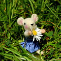 Family Mouse On The Spring Meadow by Heike Hultsch