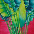Fan Palm With Pink by Helen Weston
