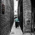 Fan Tan Alley by Micki Findlay
