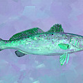 Fanciful Lavender Mint Sea Trout by Shelli Fitzpatrick
