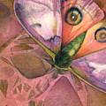 Fantasmoth 1 by Mindy Lighthipe