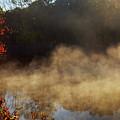 Fantastic Foggy River With Fresh Green Grass In The Sunlight. by Valentyn Semenov