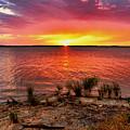 Fantastic Sky Colors by Carolyn Fletcher